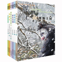动物小说名家系列(6册)