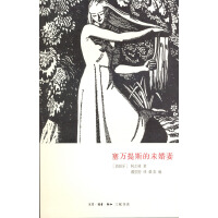 塞万提斯的未婚妻(电子书)