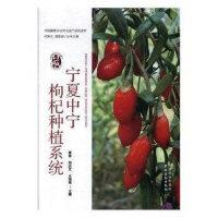 宁夏中宁枸杞种植系统