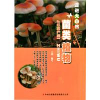 菌类植物(走进大自然),王艳写,吉林出版集团有限责任公司,9787553416038