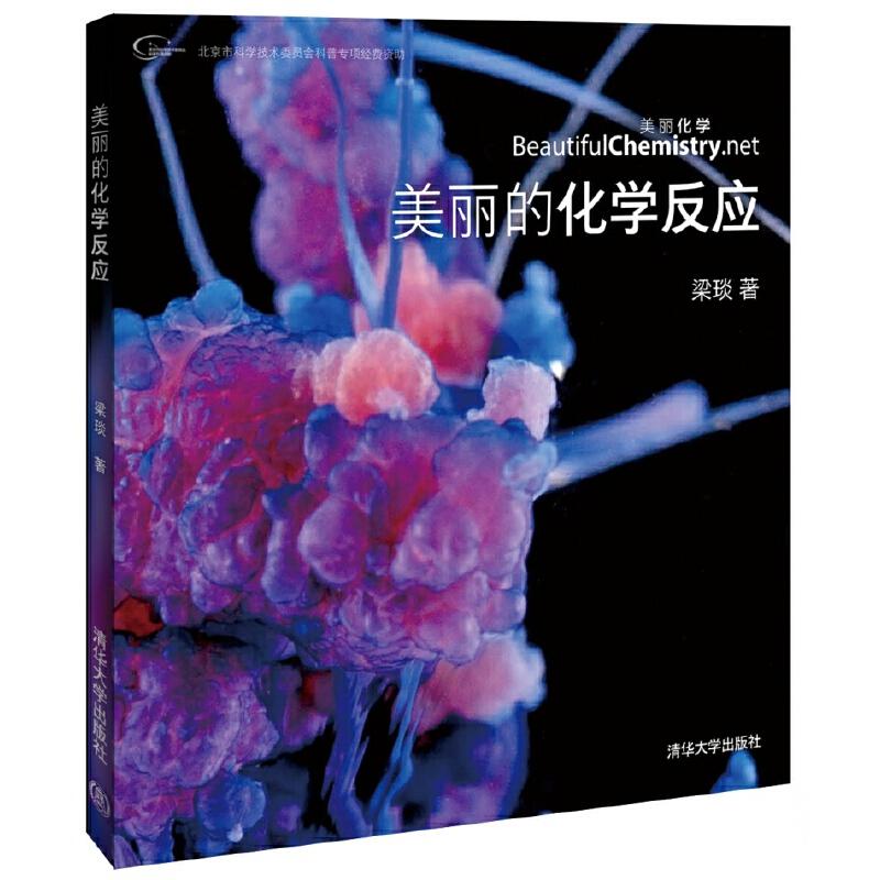 """美丽的化学反应(荣获""""大众喜欢的50种图书"""")纯粹化学,纯粹美丽,不用点疯狂的手段你还真不知道化学有多美!一段美丽化学视觉之旅!"""