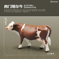 家禽仿真动物牛马羊猪驴狗猫鸭鹅鸡儿童认知牧场农场动物模型玩具