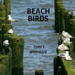 【预订】Beach Birds