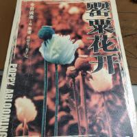【旧书二手书9成新】罂粟花开:探访金三角手记 9787801852199 /朱凌 主编 中