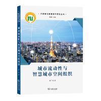 城市流动性与智慧城市空间组织(大数据与智慧城市研究丛书)