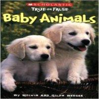 现货 Baby Animals
