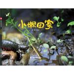 中国原创图画书:小懒回家