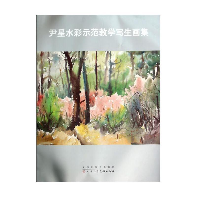 尹星水彩示范教学写生画集