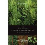 【预订】A Field Guide to the Ferns and Lycophytes of Louisiana: