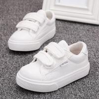 儿童帆布鞋男童板鞋春秋2019新款幼儿园小白鞋韩版女童宝宝白球鞋