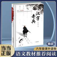 汉字奇兵(精装版)