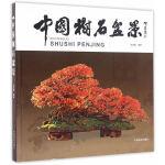 中国树石盆景(精)