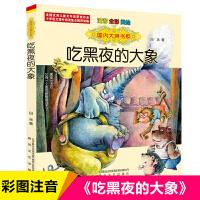 吃黑夜的大象(注音全彩美绘)/国内大奖书系