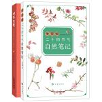 时节之美 朱爱朝二十四节气自然笔记(当当独家签名版)