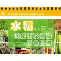 水稻病虫害及防治原色图册,傅强,黄世文,谢茂成著,金盾出版社,9787508259932