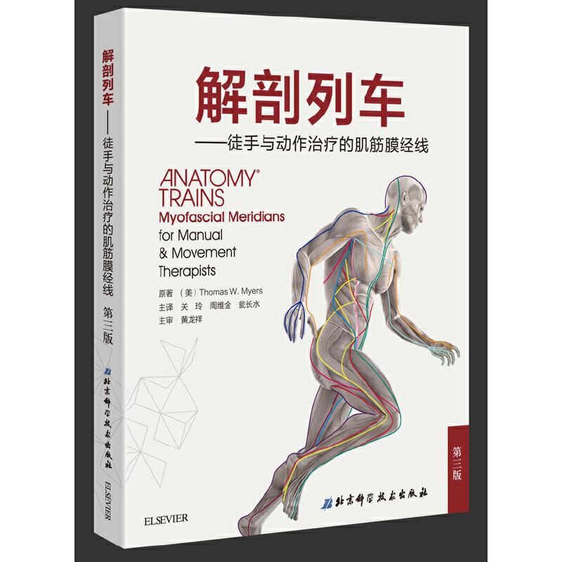 解剖列车——徒手与动作治疗的肌筋膜经线 全球徒手和运动治疗师推荐的艺术之作