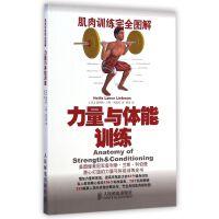 力量与体能训练(肌肉训练完全图解)