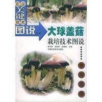 【旧书二手书9成新】 大球盖菇栽培技术图说――农业关键技术图说丛书 食用菌类