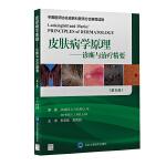 皮肤病学原理――诊断与治疗精要(第6版)