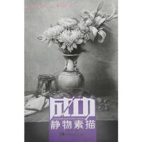 静物素描(货号:A4) 唐宏伟 9787562175308 西南师范大学出版社书源图书专营店