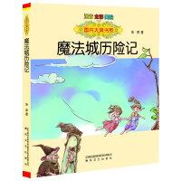 国内大奖书系-魔法城历险记(注音 全彩 美绘)
