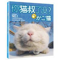 【正版二手书9成新左右】22474461 你猫叔了没? (日)白猫,刘静 北方妇女儿童出版社