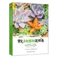 常见多肉植物这样养 木丰央,壹号图编辑部 凤凰含章出品 江苏科学技术出版社
