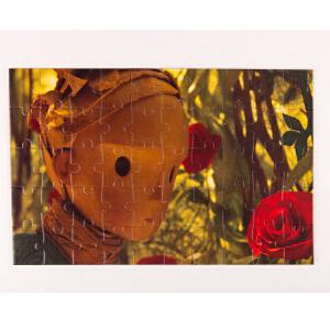 Hape小王子拼图组合沙漠玫瑰5岁以上儿童益智启蒙玩具积木拼插拼图拼板824781
