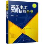 高压电工实用技能全书