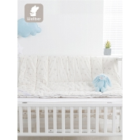 秋冬儿童宝宝小棉被冬季午睡厚幼儿园被子婴儿被芯棉