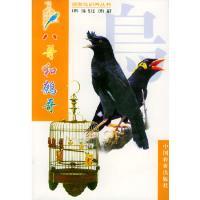 八哥和鹩哥 王增年 ,莫玉忠 王增年著 中国农业出版社 9787109061088