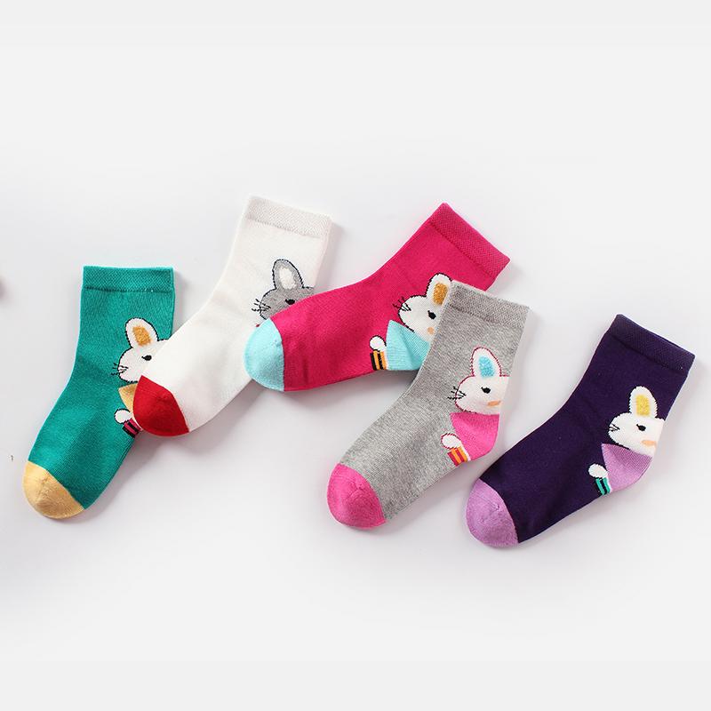 彩桥春秋季儿童袜子5双盒装纯棉男女童棉袜卡通宝宝袜子学生袜