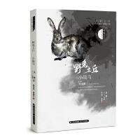王者之书 中外动物小说精品书系―― 野兔土丘・小战马