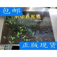 [二手旧书9成新]水中的光亮 /付新华 连环画出版社