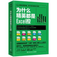 葫芦弟弟为什么精英都是Excel控熊野整新手入门零基础表格制作excel操作技巧Excel控教程训练书办公软件职场成功励