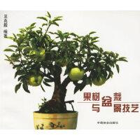 果树盆栽与盆景技艺 王兆毅 编著 中国林业出版社 9787503813139