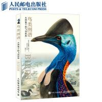鸟类图谱大师笔下的飞羽世界经典画作世界大师界鸟类学艺术藏品经典名作对迷人鸟类世界的艺术诠释