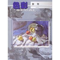 色彩静物――美术基础技法丛书