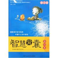 中学生阅读系列・智慧背囊・第2辑(电子书)