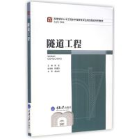 隧道工程(高等学校土木工程本科指导性专业规范配套系列教材)