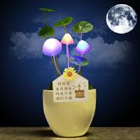 生日礼品创意居家日用蘑菇小夜灯送男女生朋友小礼品