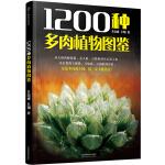 1200种多肉植物图鉴(汉竹)