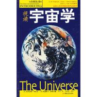 视读宇宙学,(英)菲力克斯・毕拉尼克里斯汀・洛希,安徽文艺出版社,9787539628776