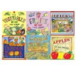 英文原版 Gail Gibbons 盖尔 吉本斯少儿百科 这是什么呀 食物系列 蔬菜水果 5册 小学STEM科普绘本图