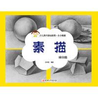 小小画家 素描 综合篇,出版社:江西美术出版社,江西美术出版社,9787548039754