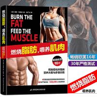 正版 燃烧脂肪,喂养肌肉 〔美〕汤姆・韦努托 著(畅销欧美16年,4周掌握精准熔化体脂的秘诀) 北京科学技术出版社