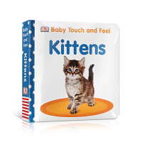 英文原版 Baby Touch and Feel Kittens 【触摸书】小猫
