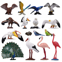 仿真动物模型孔雀鹈鹕秃鹫鸟类鹦鹉雪雕猫头鹰火烈鸟科教玩具礼物 浅褐色 鸟类齐集
