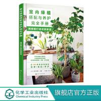 室内绿植搭配与养护完全手册 用绿植打造花园家居 庭院景观设计 家居园艺小花园庭院设计 花园园林景观设计花园植物种植图解书