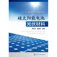 【正版二手书9成新左右】硅太阳能电池光伏材料 滕道祥著 化学工业出版社